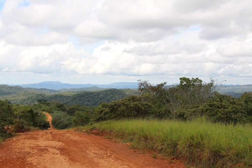 Pantanal - über Stock und Stein