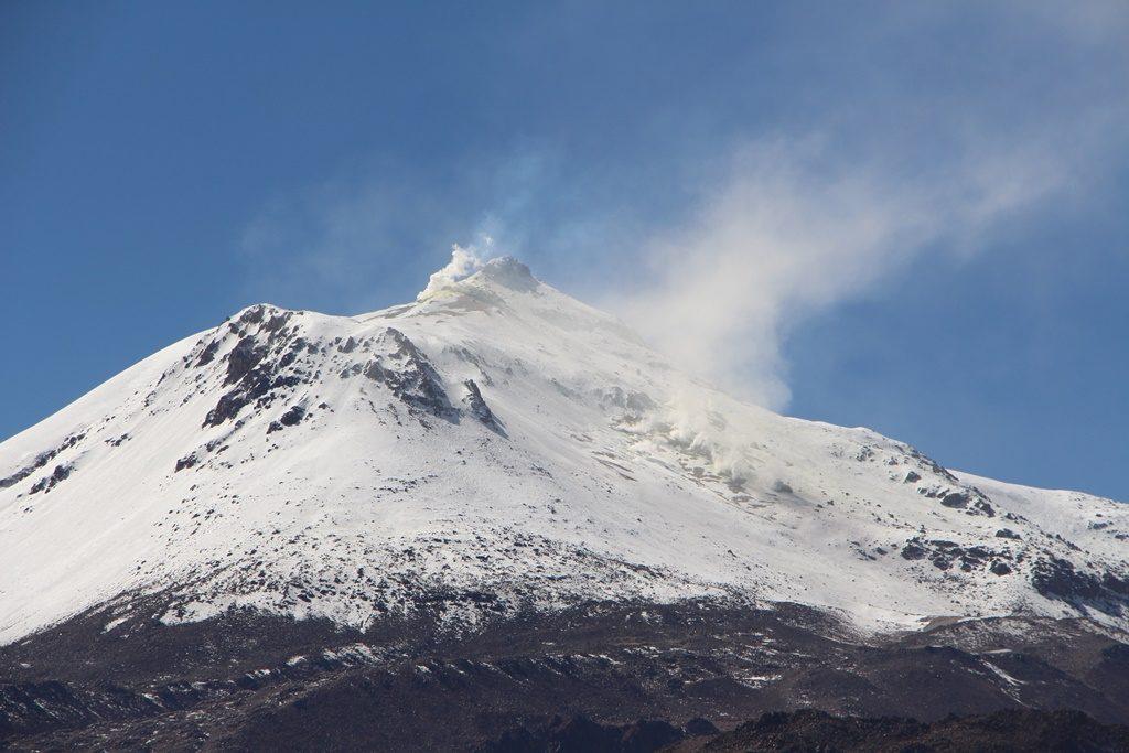 Reservat de Vicuñas - Vulkan Guallatiri (6063 M.ü.M.)