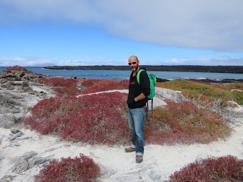 Insel Sombreo Chino