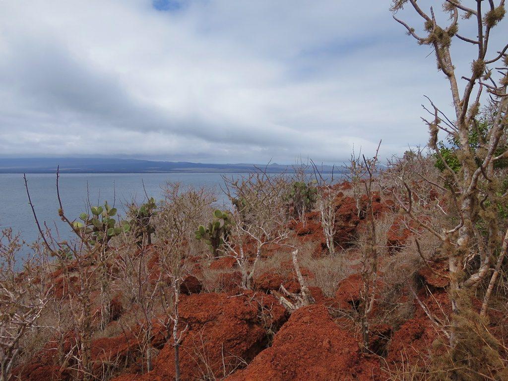 Insel Ràbida
