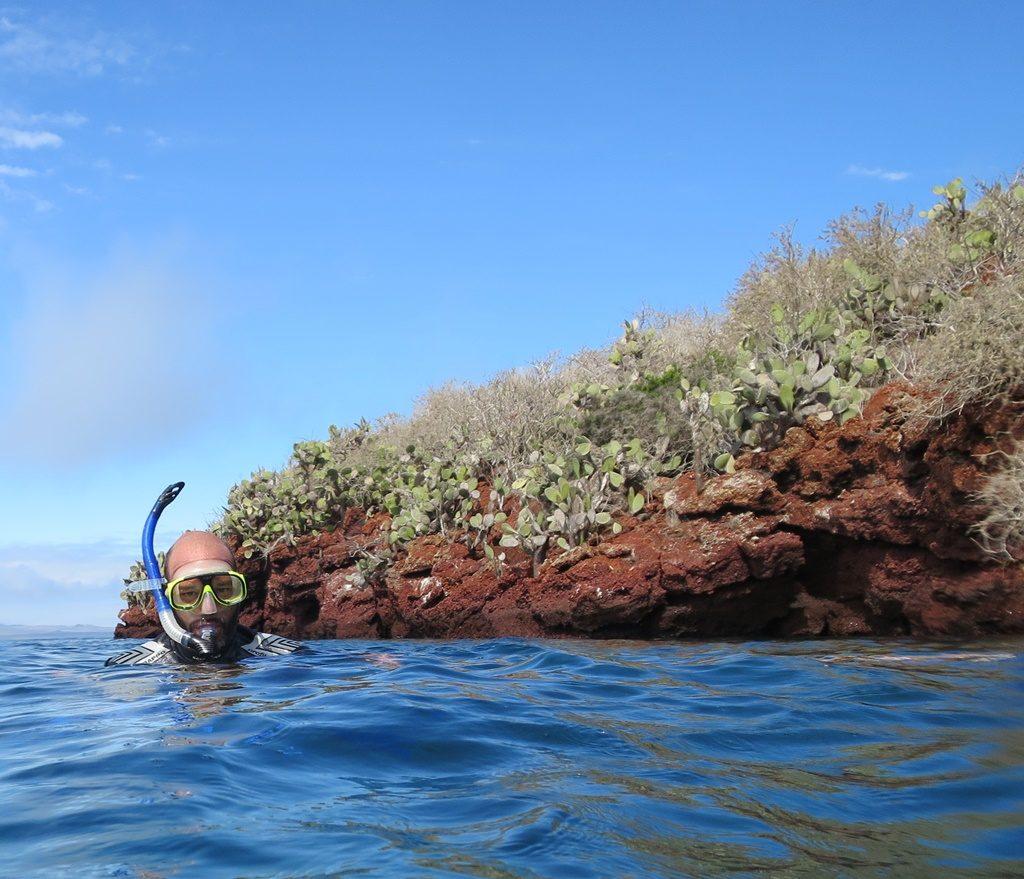 Schnorcheln bei Isla Santiago / Puerto Egas