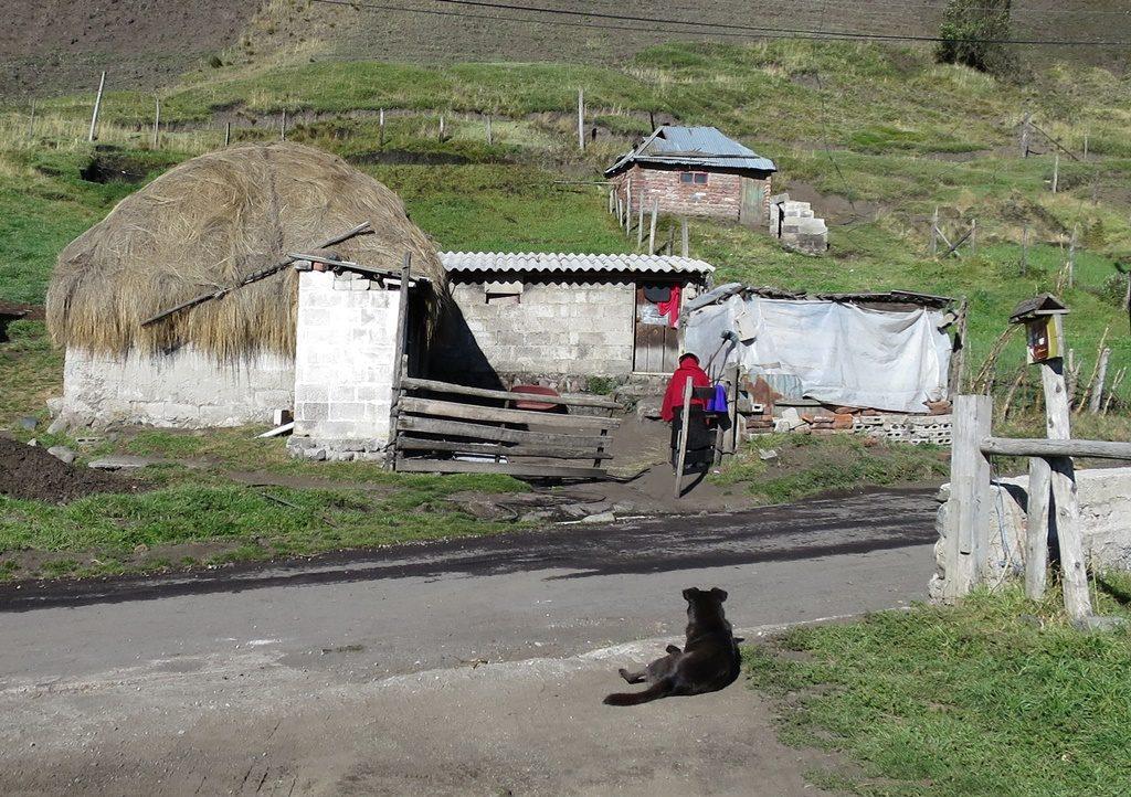 Unsere Nachbarin am Vulkan Chimborazo