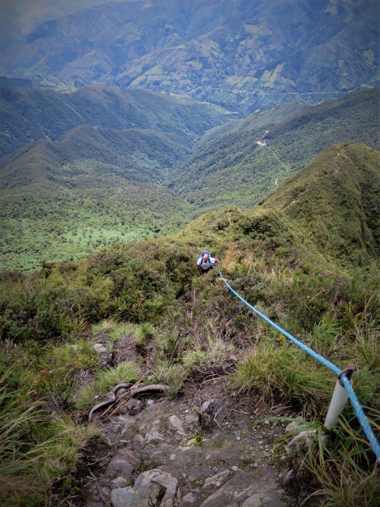 Kletterpartie im Podocarpus Natioanlpark