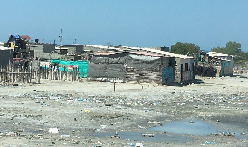 Leben im Müll an der Küste